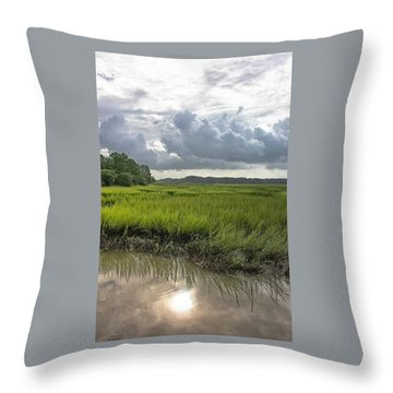 Throw Pillow featuring the photograph Island by Margaret Palmer