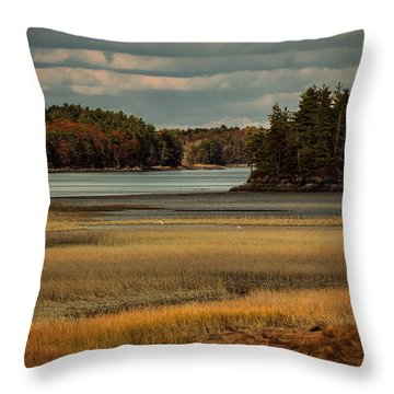 Island On The Lake Throw Pillow
