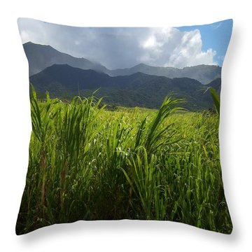 Island Paradise Throw Pillow by David and Lynn Keller