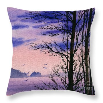 Throw Pillow featuring the painting Island Point by James Williamson
