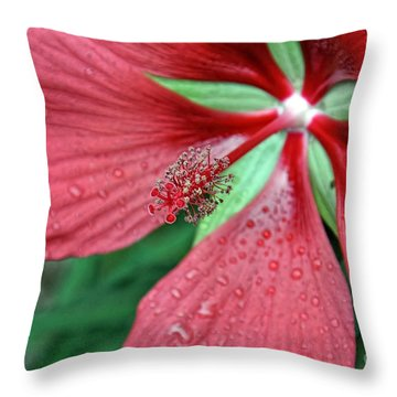 Throw Pillow featuring the photograph Island Red by Gina Savage