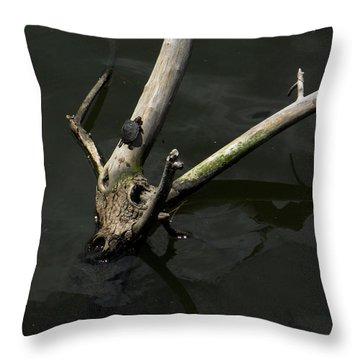 Island Sanctuary Throw Pillow by Maggy Marsh