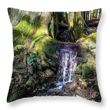 Island Stream Throw Pillow by William Wyckoff