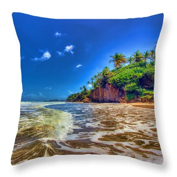 Island Wave Throw Pillow