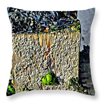Isle Of Man Low Tide Throw Pillow