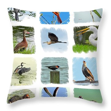 Isles Birds Collage Throw Pillow
