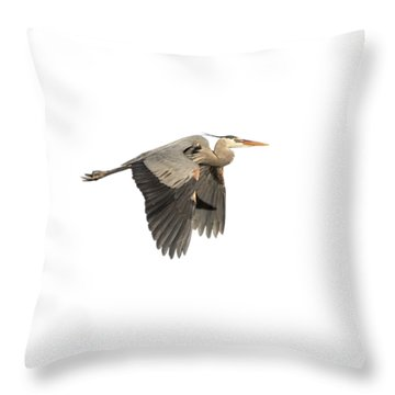 Throw Pillow featuring the photograph Isolated Great Blue Heron 2015-5 by Thomas Young