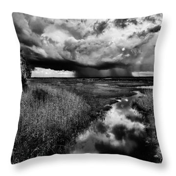 Isolated Shower - Bw Throw Pillow by Christopher Holmes