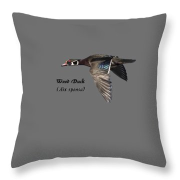 Isolated Wood Duck 2017-1 Throw Pillow