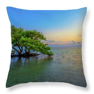 Isolation Throw Pillow by Chad Dutson
