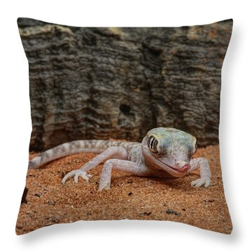 Throw Pillow featuring the photograph Israeli Sand Gecko - 1 by Nikolyn McDonald