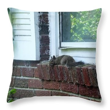 Throw Pillow featuring the photograph It Is Cool Here In The Shade by Denise Fulmer