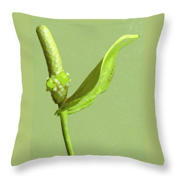 It's A Green Thing Throw Pillow