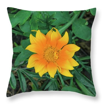It Is Love, Not Reason, That Is Stronger Than Death.  Throw Pillow