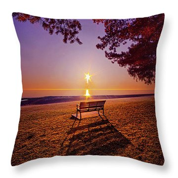 Throw Pillow featuring the photograph It Is Words With You I Seek by Phil Koch