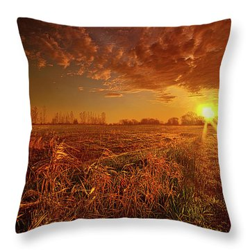 Throw Pillow featuring the photograph It Just Is by Phil Koch