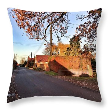 It Looks Like We've Found Our New Home Throw Pillow