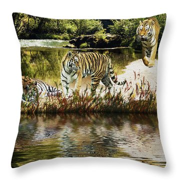Throw Pillow featuring the photograph It Must Be Time For A Tiger Nap by Diane Schuster
