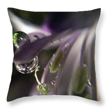 It Said, I'm Not What You Think Throw Pillow