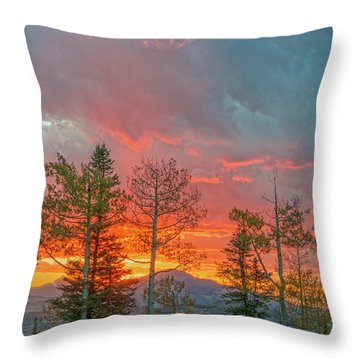 It Takes A Long Time To Grow Old Friends. Make Sure You Treasure Them.  Throw Pillow