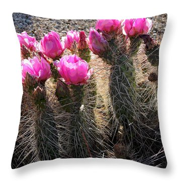 It Takes Pains To Be Beautiful Throw Pillow