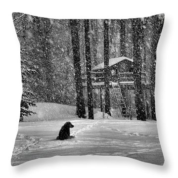 It Was A Dark And Stormy Night Throw Pillow by Elizabeth Dow