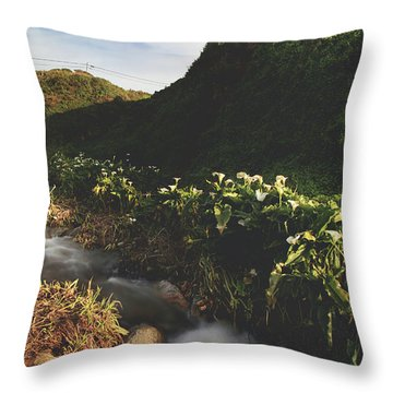 Throw Pillow featuring the photograph It Was A Hard Winter by Laurie Search