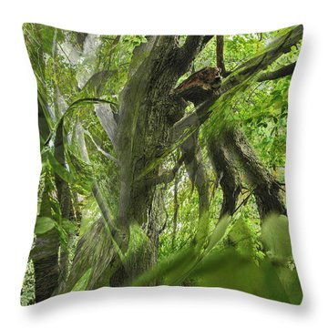 It Was A Windy Day.... Throw Pillow