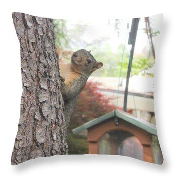 Throw Pillow featuring the photograph It Was Not Me I Tell Yuh by Marie Neder