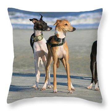 Italian Greyhounds On The Beach Throw Pillow