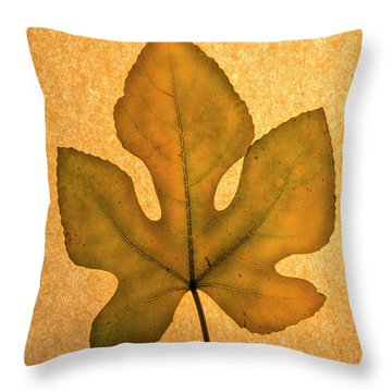 Throw Pillow featuring the photograph Italian Honey Fig Leaf 4 by Frank Wilson