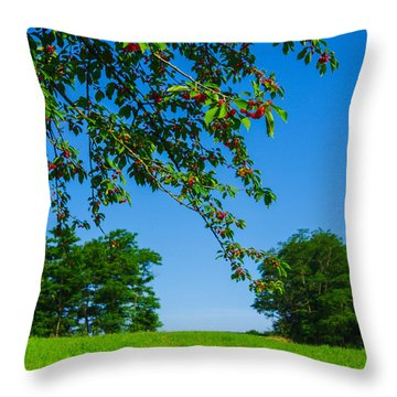 Italian Landscape Throw Pillow by Cesare Bargiggia