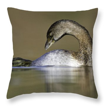 Throw Pillow featuring the photograph Itchy Grebe by Bryan Keil