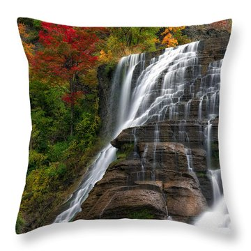 Ithaca Falls Throw Pillow