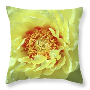 Itoch Peony  Throw Pillow