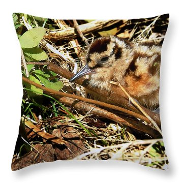 It's A Baby Woodcock Throw Pillow