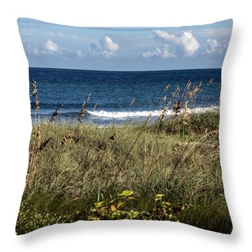It's A Beautiful Day  Throw Pillow by Nance Larson