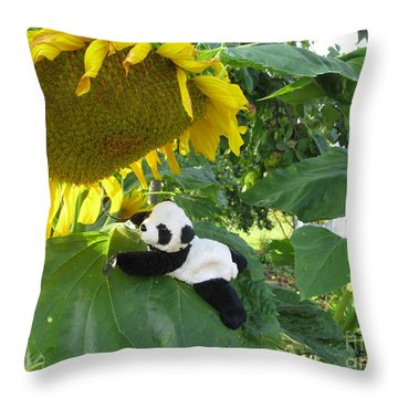 Throw Pillow featuring the photograph It's A Big Sunflower by Ausra Huntington nee Paulauskaite
