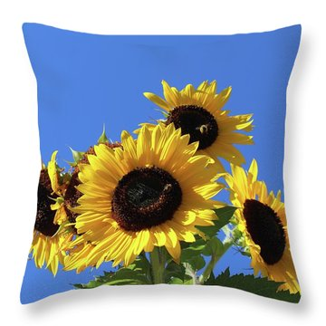 It's A Blue Sky Day Throw Pillow