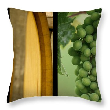 Its A Colourful World Throw Pillow by Lisa Knechtel