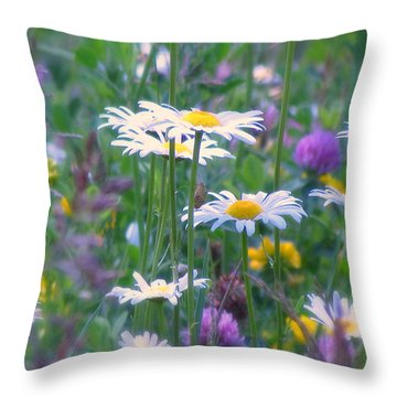 It's A Daisy Kind Of Day Throw Pillow