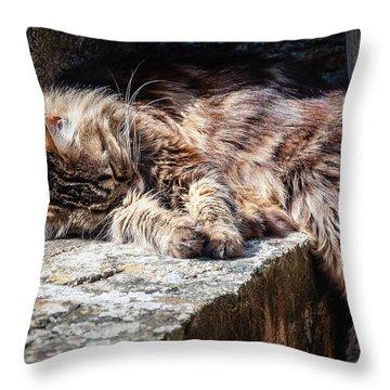 It's A Hard Life Throw Pillow