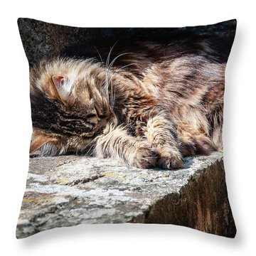 It's A Hard Life Throw Pillow