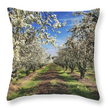 Throw Pillow featuring the photograph It's A New Day by Laurie Search