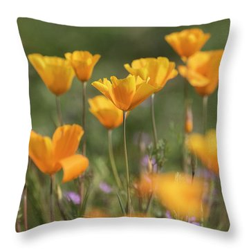 Throw Pillow featuring the photograph It's A Poppy Thing  by Saija Lehtonen