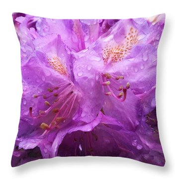 Throw Pillow featuring the mixed media It's A Rainy Day by Gabriella Weninger - David