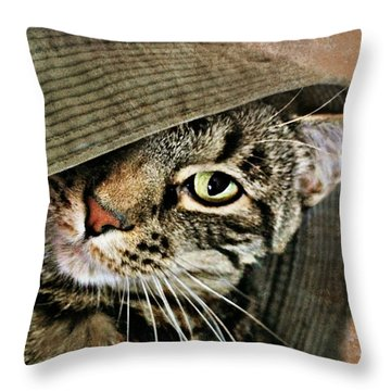 It's All About Me Throw Pillow by Kathy M Krause