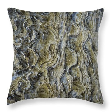 It's All In The Details Throw Pillow