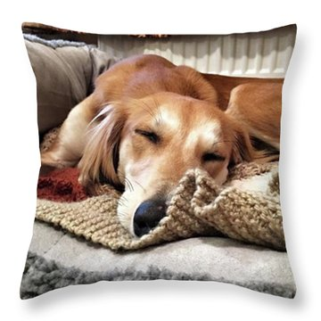 It's Been A Hard Day...  #saluki Throw Pillow