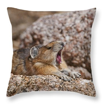 Throw Pillow featuring the photograph It's Been A Long Day by Gary Lengyel